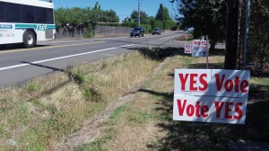 Campaign signs on Gibson Hill Road in North Albany.