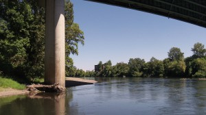 The Willamette River, where clean-water rules may have to be revised.