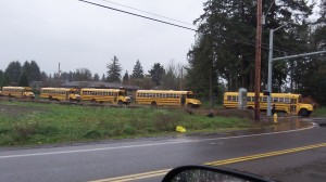 Are we going to quit busing school children? Probably not.