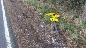 "A road sign was, we hope, the only victim of this ""road departure"" on Bryant Drive."