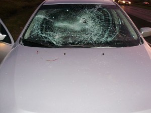 The state police released this photo of the destroyed windshield.