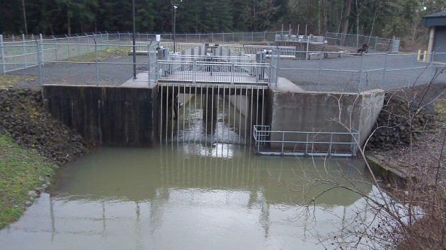 The canal starts here, on the South Santiam River upstream of Lebanon.