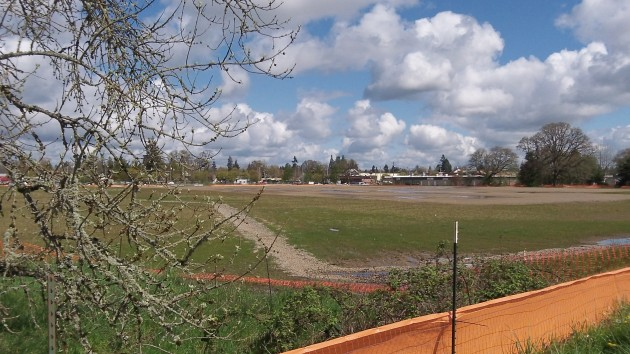 The vast empty lot basks in the spring sunshine on Friday.