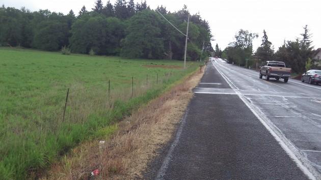 Looking north on Crocker Lane. Note the wide shoulder.