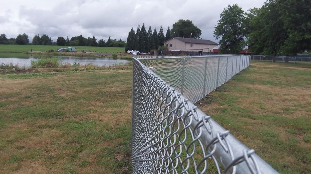 The back fence of the dog area is near Timber Lake.
