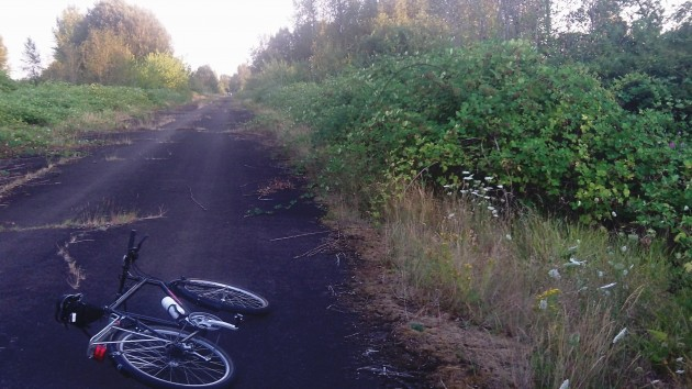 Blackberry alley at E.E. Wilson: No good place to lean your bike.