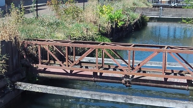 This segment of the Santiam Canal in downtown Albany is in poor shape and needs to be repaired.
