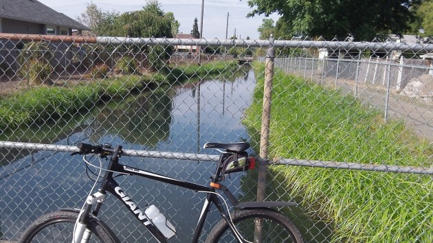 Looking downstream along the Santiam Canal from Albany's Ninth Avenue.