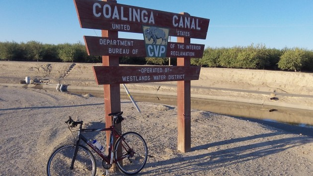There's still water in the Coalinga canal. The almond orchard in the back has drip irrigation.