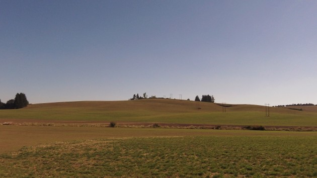 The view from Ryals Avenue N.W. in outside of North Albany on Oct. 2.