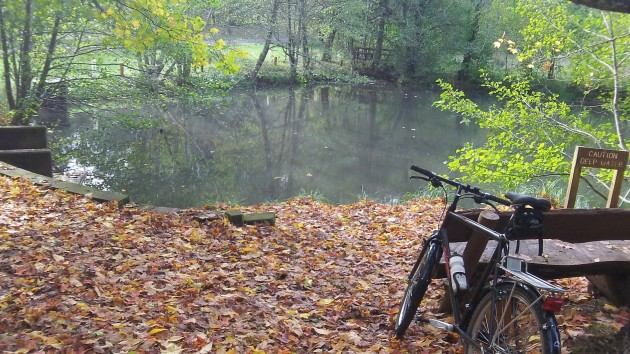 The time change hardly matters at this quiet pond, but everywhere else it does.