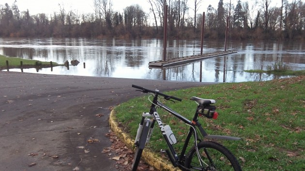 You couldn't reach the floating dock at Bowman Park with dry feet Saturday.