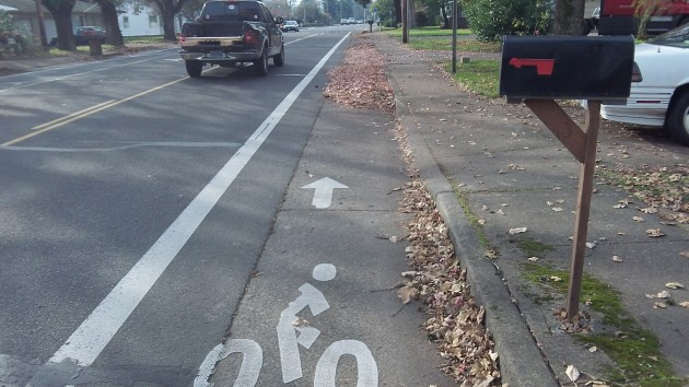 bike lane leaves 002
