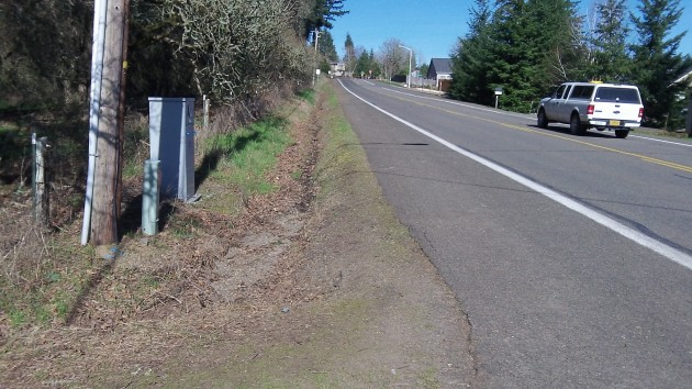 A wide walking and bike path, a convenient ditch: What is there to improve?