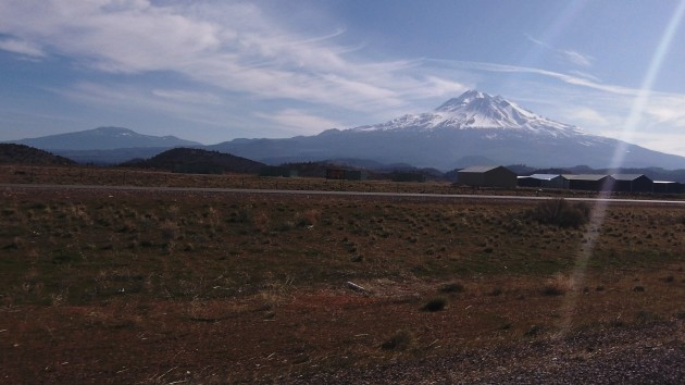 Even Mount Shasta has very little snow this March.