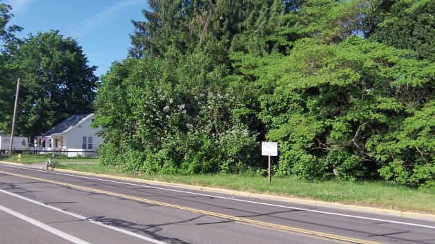 Apartments could be built on this wooded lot under the proposed rezoning.