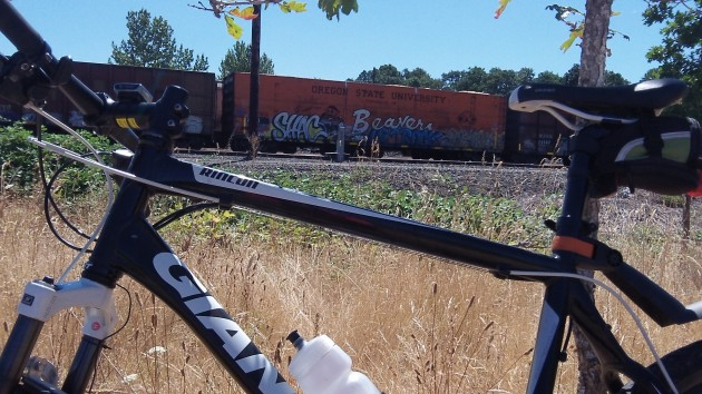 I was touring the Talking Water Gardens when I spotted the Beavers car in the Millersburg yard.