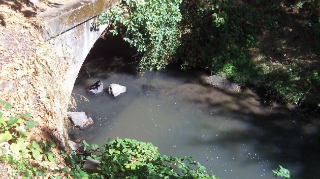 The creek at Santiam Road: Would a path fit under there?
