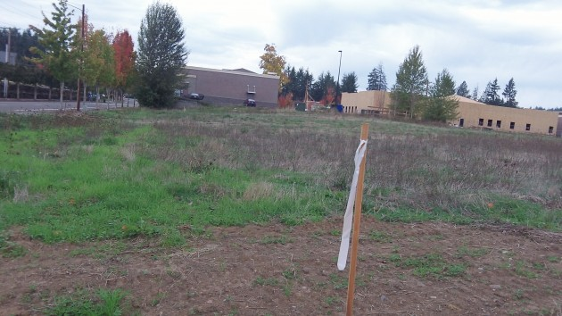 Samaritan plans to put up two medical buildings on this land.