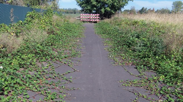 This Corvallis stub of the Albany-Corvallis bikeway is likely to remain a dead end forever.