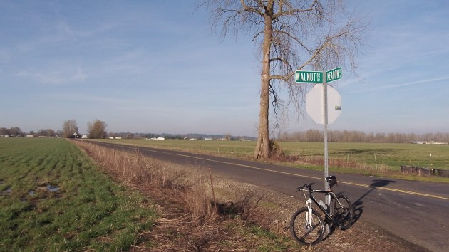 You don't have to worry about too much traffic at this corner in Linn County.