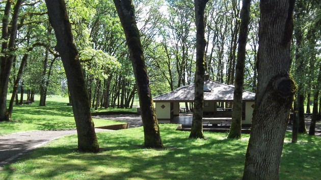 On a sunny day in spring, the area near the North Albany County Park shelter.