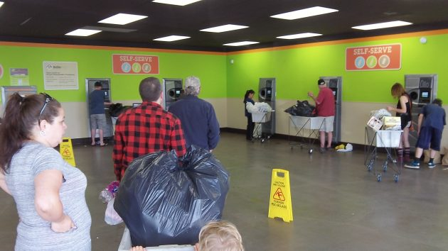 All the machines were busy at the Albany Bottle Drop Friday afternoon.