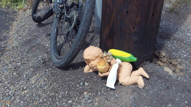 Maybe there's some significance to the presence of this plastic cherub by the side of the Highway 34 bikeway, and maybe not.