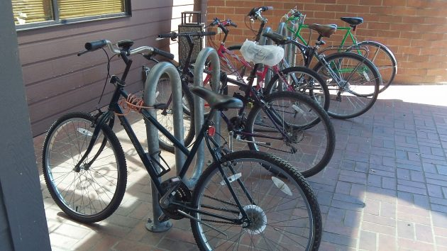 At Albany's main public library, bike parking is no problem.