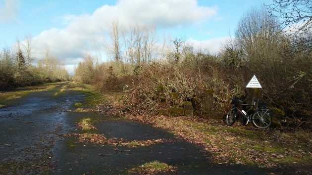 One of the roads in the Wilson Wildlife Area on the afternoon of Christmas Eve,